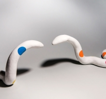 Circus Snakes (diptych)